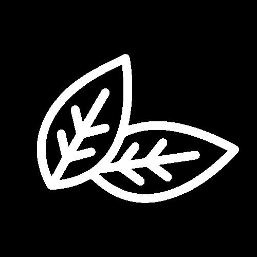 икона за съдържание на никотин